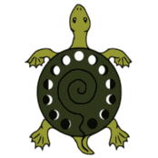 turtle_logo_transparent-square-small.png
